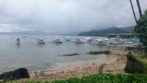 サバンの港の写真