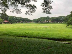 フィリピン大学 サンケンガーデン