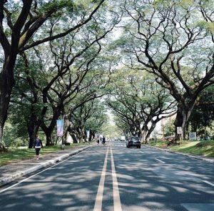 フィリピン大学 サンケンガーデンロード