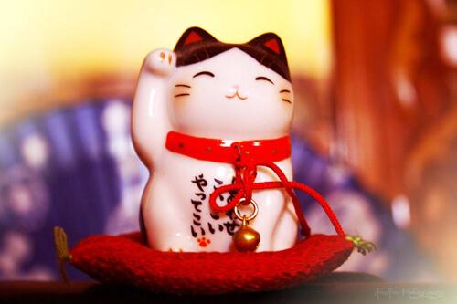 ベトナム人が喜ぶ日本のお土産【女性向け・男性向け・家庭向けを紹介】